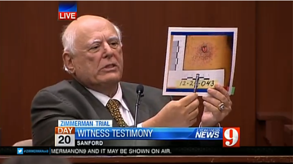Noted forensic pathologist, Dr. Vincent Di Maio, testifying for the defense