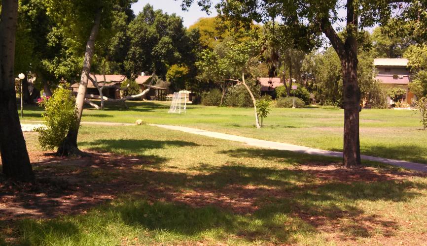 (Kibbutz Ein Shemer residential courtyard)