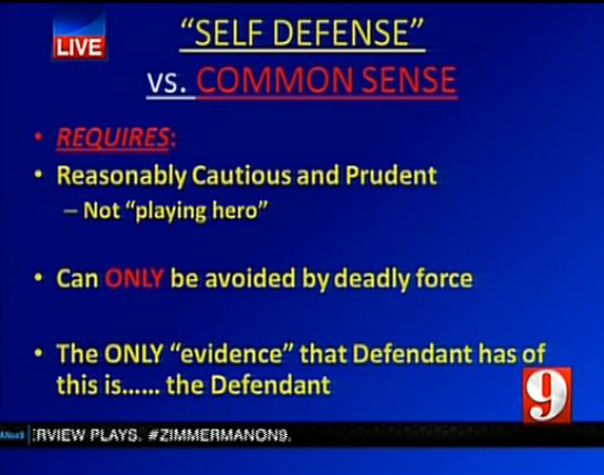(Slide used by prosecution in Zimmerman trial during closing argument)
