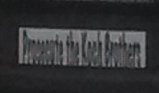 Bumper Sticker - NYC - Prosecute Koch Brothers