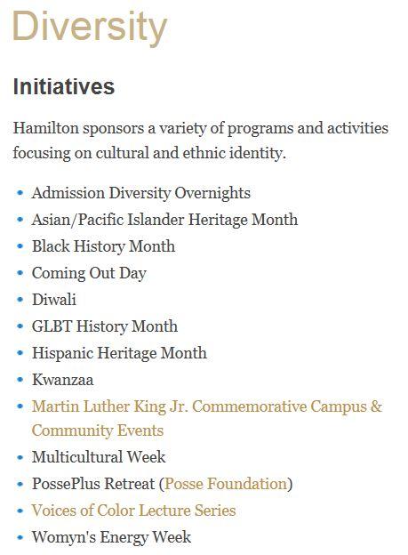 Hamilton Diversity Initiatives