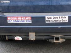 Bumper Sticker - Nashville NC - Guns Guts
