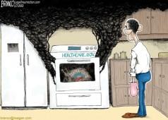 Obama-Care Turkey