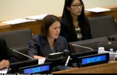 UN AntiIsrael Resolutions Interpreter