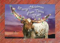 Merry Christmas from Texas