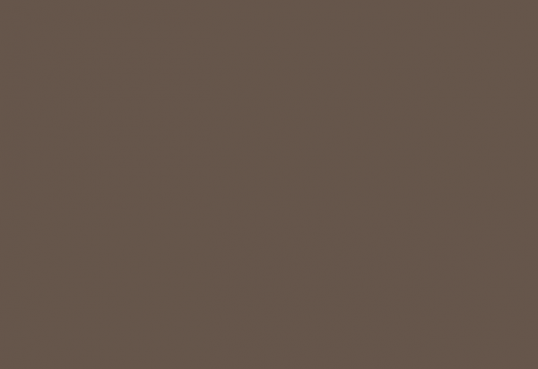 Benjamin Moore Clinton Brown Color