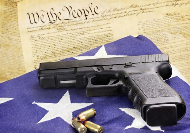 Image result for firearm safety act