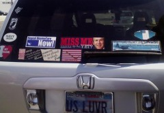 Bumper Stickers - Roswell NM - Miss Me Yet
