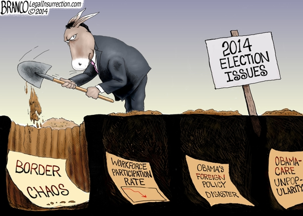 Election Issues 2014 Cartoon