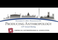 American Anthropological Association 2014 Annual Meeting Banner