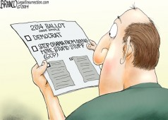 2014 Election Choices
