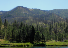 National Forest Service Film Permit
