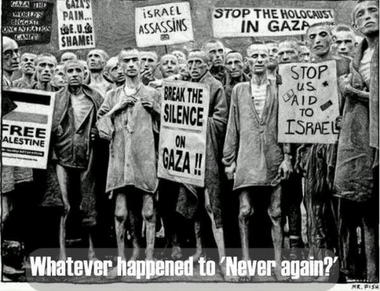 I Acknowledge Apartheid Exists Facebook Image Holocaust Survivors with Anti-Israel Signs - Image