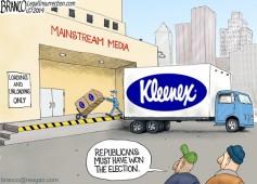 Post Election Blues