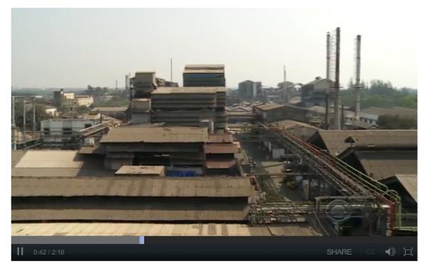 LI #17 India Pollut
