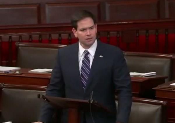 Marco Rubio senate