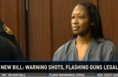 Marissa-Alexander-FL-SB-448-warning-shot-bill