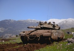 2105-04-26_IDF_Golan_16515105490_3c79056058_k