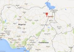 nigeria sambisa forest