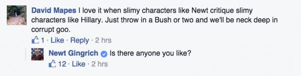 Newt Gingrich troll internet troll facebook troll
