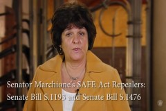 Kathy Marchione SAFE Act Repeal