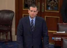 Ted Cruz on Senate Floor