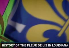 history of the fleur de lis in louisiana confederate flag social justice warrior racism erasing history