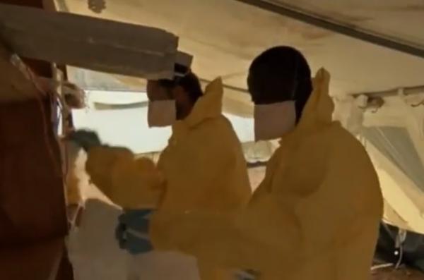 ebola 8.1