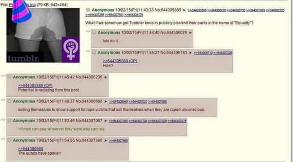 feministhoax