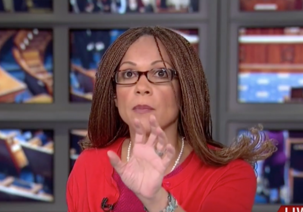 meliss harris-perry hard worker super careful slavery cotton fields msnbc media bias