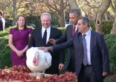 president obama turkey pardon video 2015 thanksgiving official
