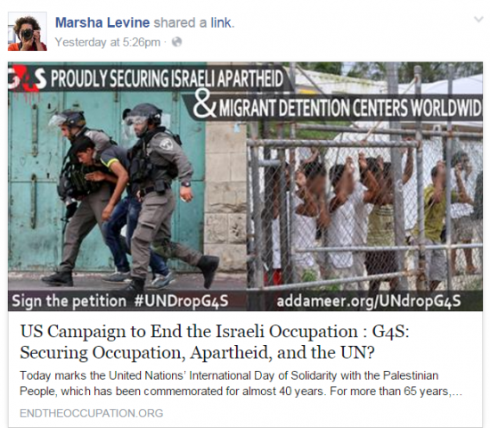 Marsha Levine Facebook US Campaign Share
