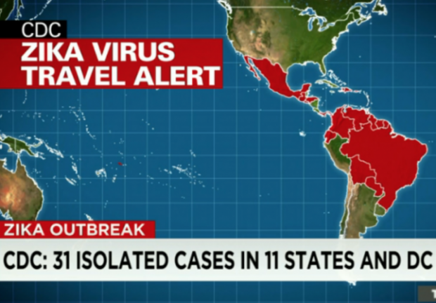 zika virus who spread travel warning updates
