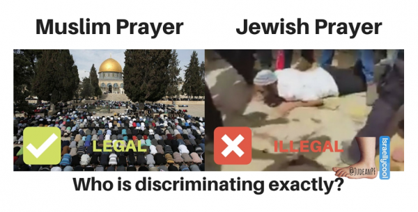 mount freedom muslim singles The wakf, which is the muslim authority granted de facto control of the temple mount by the israeli government since 1967, places strict restrictions on jewi.