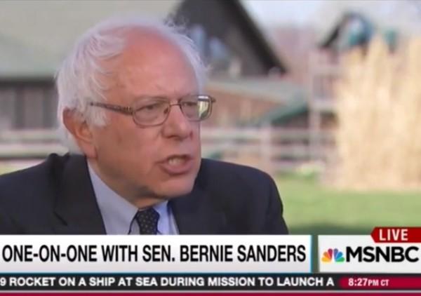 Bernie MSNBC