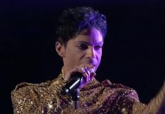 LI #25 Prince