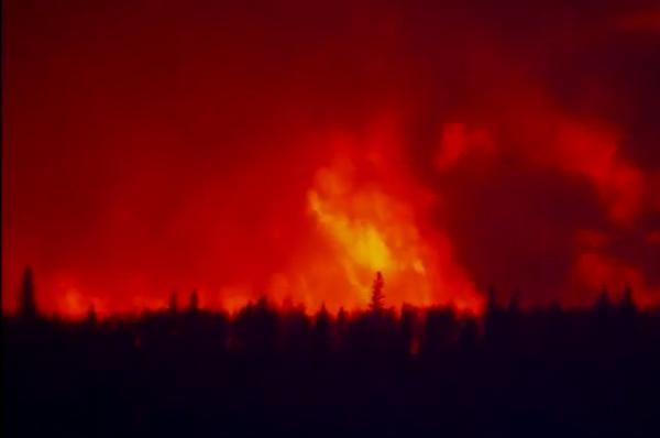LI #31 Alberta Wildfire