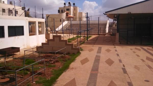 [Mount Gerizim - Samaritan Ritual Animal Sacrifice Area]
