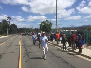 Sanders Vista Crowd