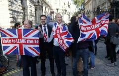 LI #60 #Brexit #Leave