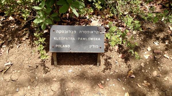 Righteous Among Nations Kleopatra Polowska