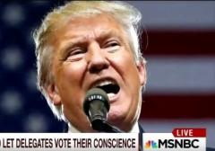 Trump Morning Joe 6-20-16