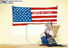 Obama Race Divider