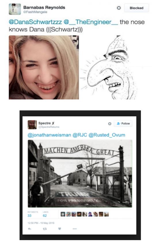 Alt-right neonazi pics
