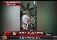 Venezuela Malaria