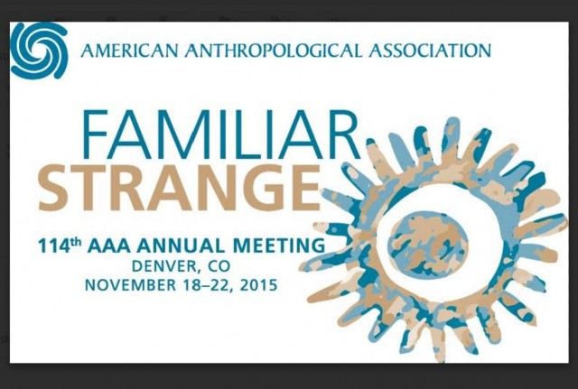 American Anthropological Association 2015 Annual Meeting Logo - w Border
