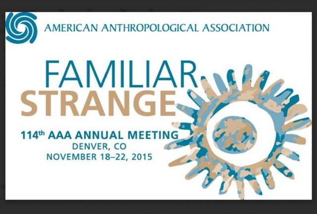 American Anthropological Association 2015 Annual Meeting Logo - w Border