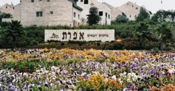 """In Hebrew: """"Welcome to Efrat"""""""