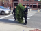 Maine: Police Arrest Man Dressed as Tree for Blocking Traffic