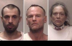 http://www.foxnews.com/us/2016/11/16/gun-toting-grandmother-foils-home-invasion-3-arrested.html